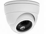 Camera IP Dome hồng ngoại AVTECH AVN320P